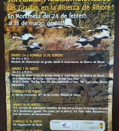 MONTMESA, XIV Certamen de Tapas Montmesa (domingo, 11)
