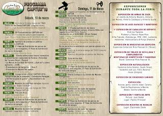 CALAMOCHA. Feria Captur (días 10 y 11)