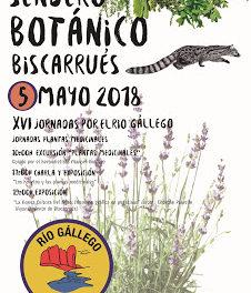 BISCARRUÉS. Sendero Botánico (sábado, 5)