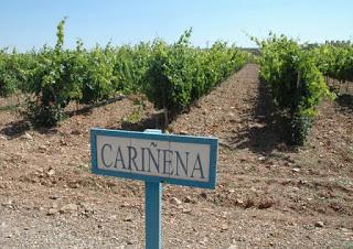 Degustación de vinos de Cariñena (viernes, 4)