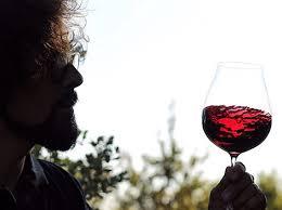 Cata maridada de vinos de Bodegas Frontonio (jueves, 19)