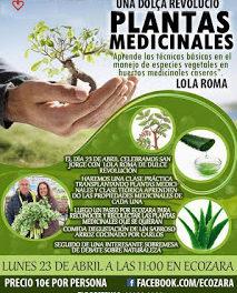 Clase sobre plantas medicinales (lunes, 23)