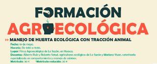 HUESCA. Talleres de manejo de huerta ecológica con tracción animal  (sábado, 19)