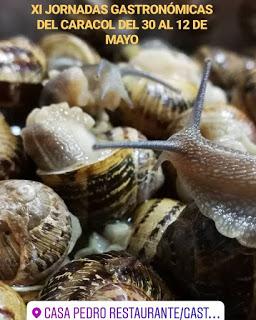Jornadas del caracol (del 1 al 12 de mayo)