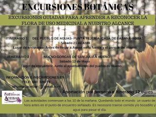 HUESCA. Excursión para conocer la flora de uso medicinal (sábado, 12)