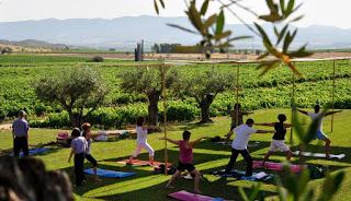 BARBASTRO. Taller de Yoga con vino en BODEGAS LAUS (sábado, 2)