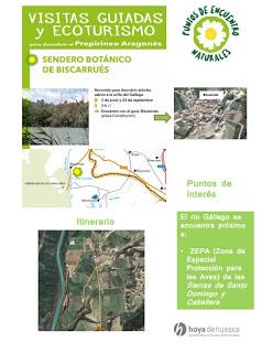 HUESCA. Excursión por el Sendero Botánico de la Hoya de Huesca (domingo, 3)
