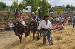COLUNGO. XII Fiesta de la Siega y la Trilla (domingo, 22)