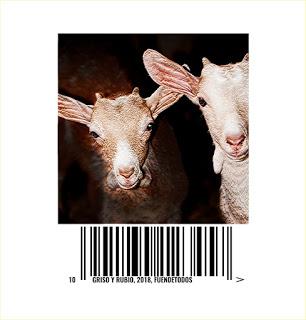 SÁDABA. Exposición de fotos de ganado en LA ENCANTARIA (hasta el 30 de septiembre)