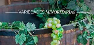 Degustación de vinos de variedades minoritarias (jueves, 9)