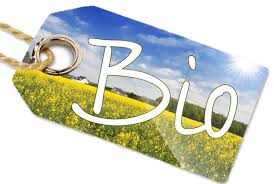 Degustación de vinos ecológicos (jueves, 27)