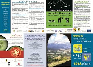 AÍNSA. Expoferia de Sobrarbe (del 7 al 9)