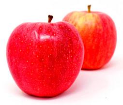 Curso online de dietética y nutrición en AZAFRÁN