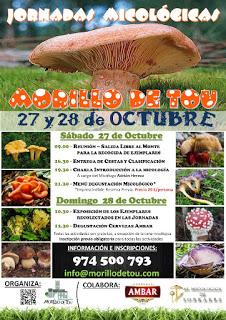 MORILLO DE TOU. Jornadas micológicas (días 27 y 28)