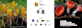 AYERBE. XXVIII Jornadas Micológicas (27 y 28)