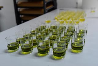 HUESCA, Conferencia sobre el aceite de oliva (martes, 16)