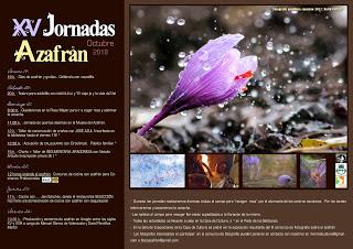 MONREAL DEL CAMPO. XV Jornadas del azafrán (del 19 al 26)
