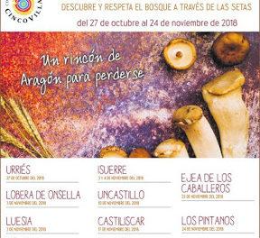 CINCO VILLAS. Jornadas micológicas (Del 27 de octubre al 24 de noviembre)