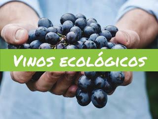 Degustación de vinos de vinos ecológicos (sábado, 3)