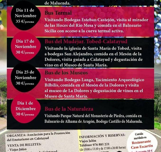 Bus del vino Calatayud (sábado, 1)