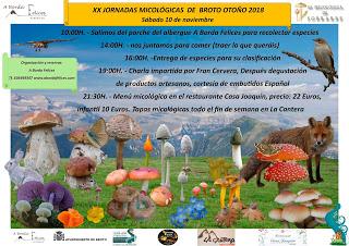 BROTO. XX Jornadas Micológicas (sábado, 10)