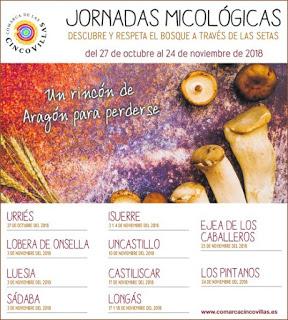 LOS PINTANOS. Jornadas micológicas de las Cinco Villas (sábado, 24)