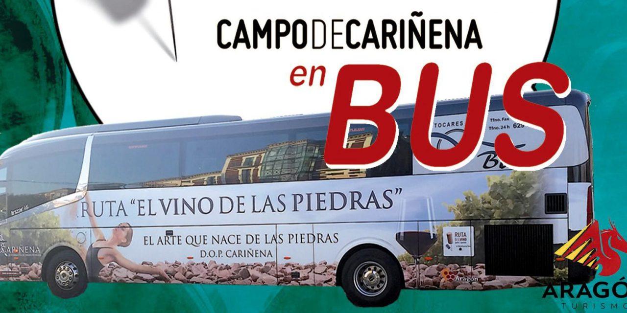 ZARAGOZA / CARIÑENA. Excursión Ruta del Vino Campo de Cariñena (sábado, 15)