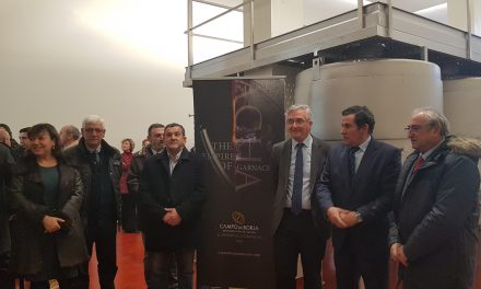 Campo de Borja estrena bodega y récord de ventas