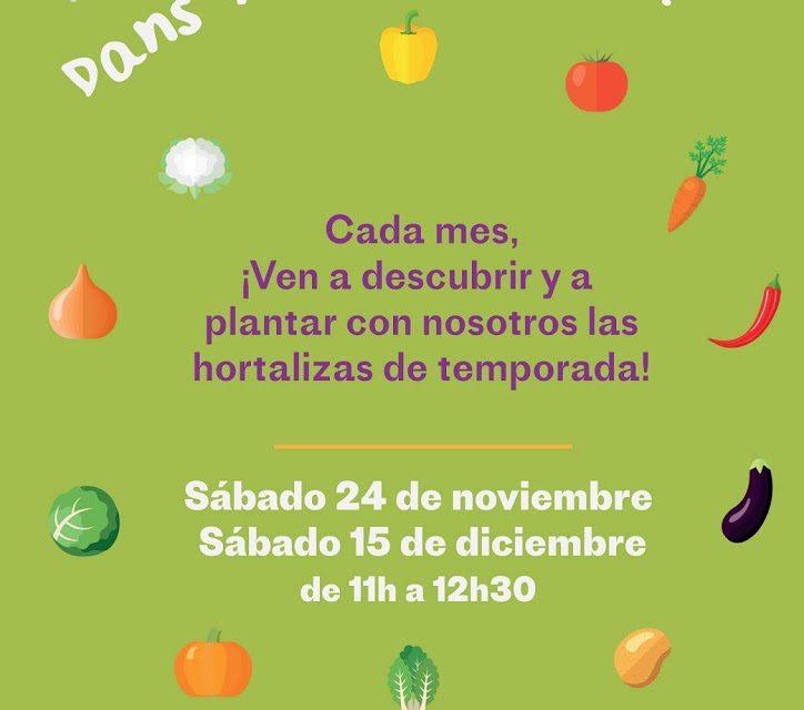 Taller de hortalizas para niños (sábado, 15)