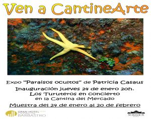 CARTEL expo Patricia Casaus