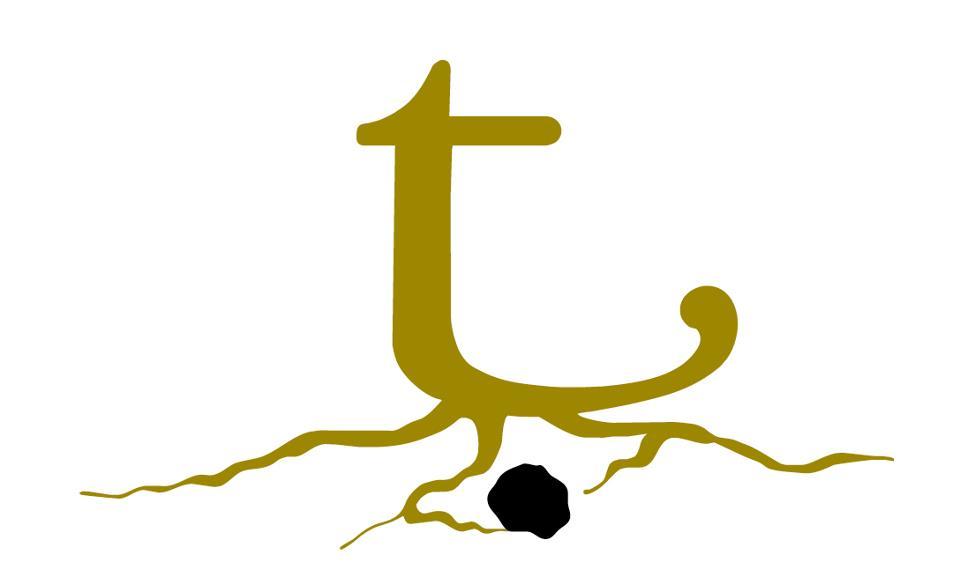 Trufa negra Teruel logotipo