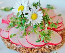 azafran ciclo cocina y salud