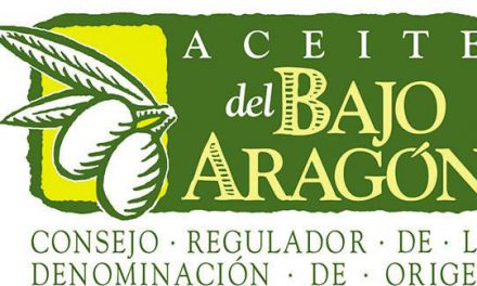 Los mejores aceites del Bajo Aragón 2020