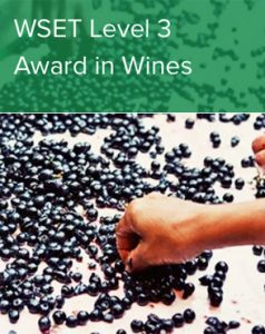 WSET Level 3 Award in Wines - Grape Bebop