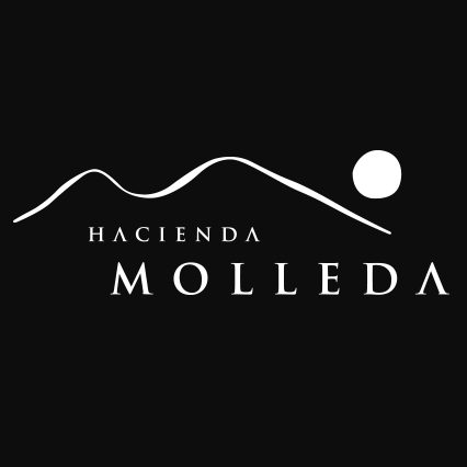 Logo Hacienda Molleda
