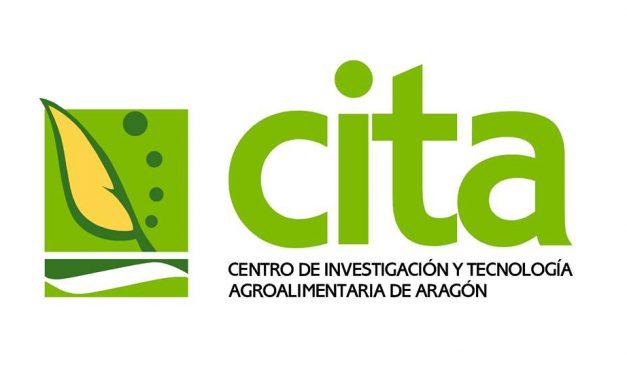 El CITA investiga sobre la mejora de la productividad de la borraja
