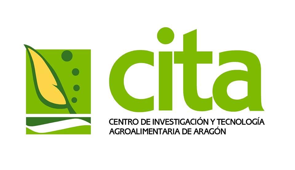 Lucía Soriano, nueva directora del CITA