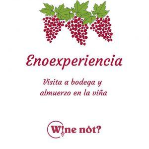 Enoexperiencia Wine Not