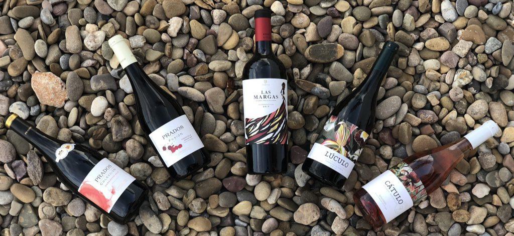 Axial Vinos cata 2019