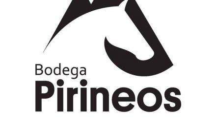 Bodega Pirineos presenta Alquézar Rosado 2019
