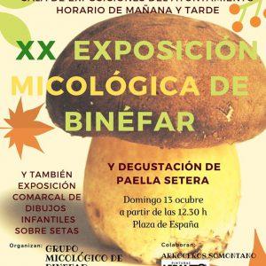 Exposición micológica