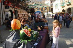 Feria de artesanía - Alcolea de Cinca