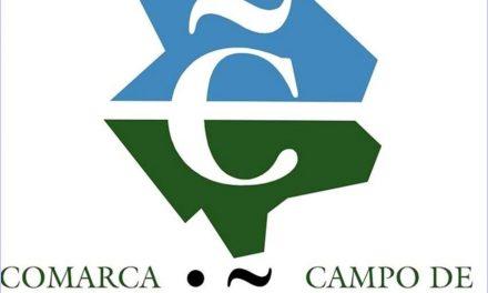 Un 20% más de visitantes al Campo de Cariñena