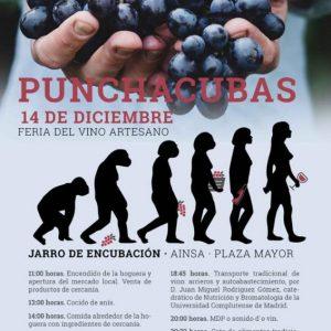 Feria del vino artesano Punchacubas