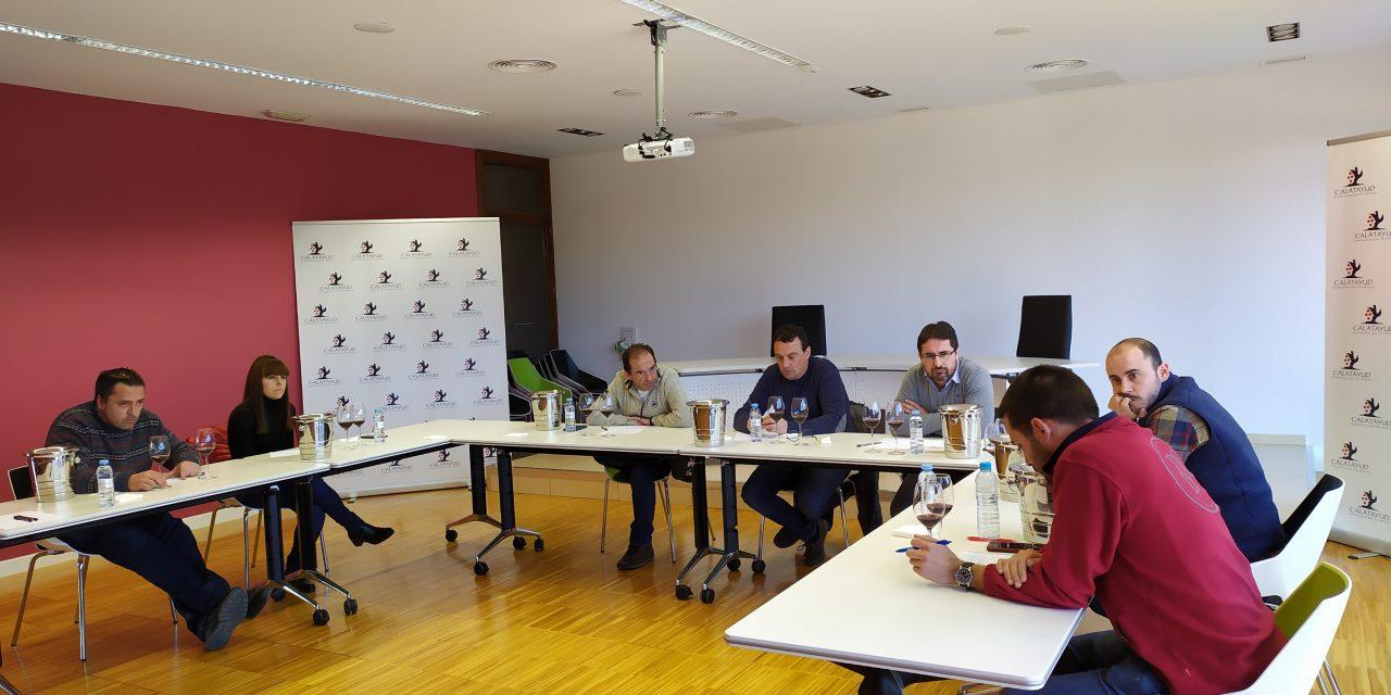La añada 2019 de la DOP Calatayud, vinos 'con identidad y originales'