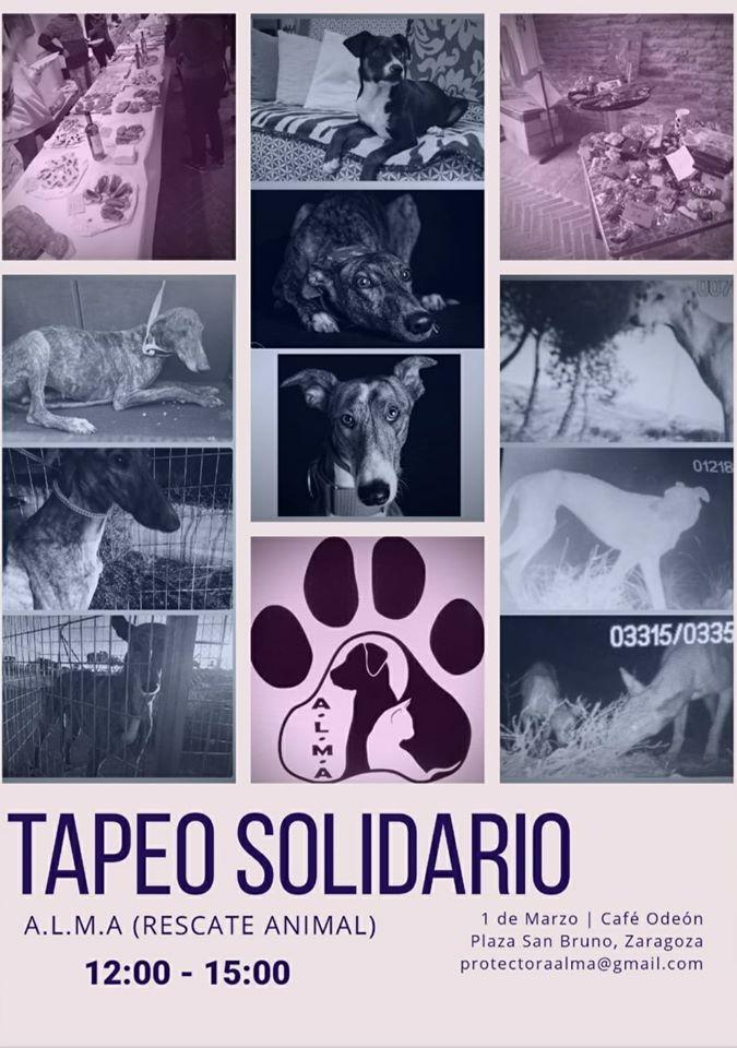 Tapeo Solidario Café Odeón