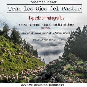 Exposición Tras los ojos del pastor