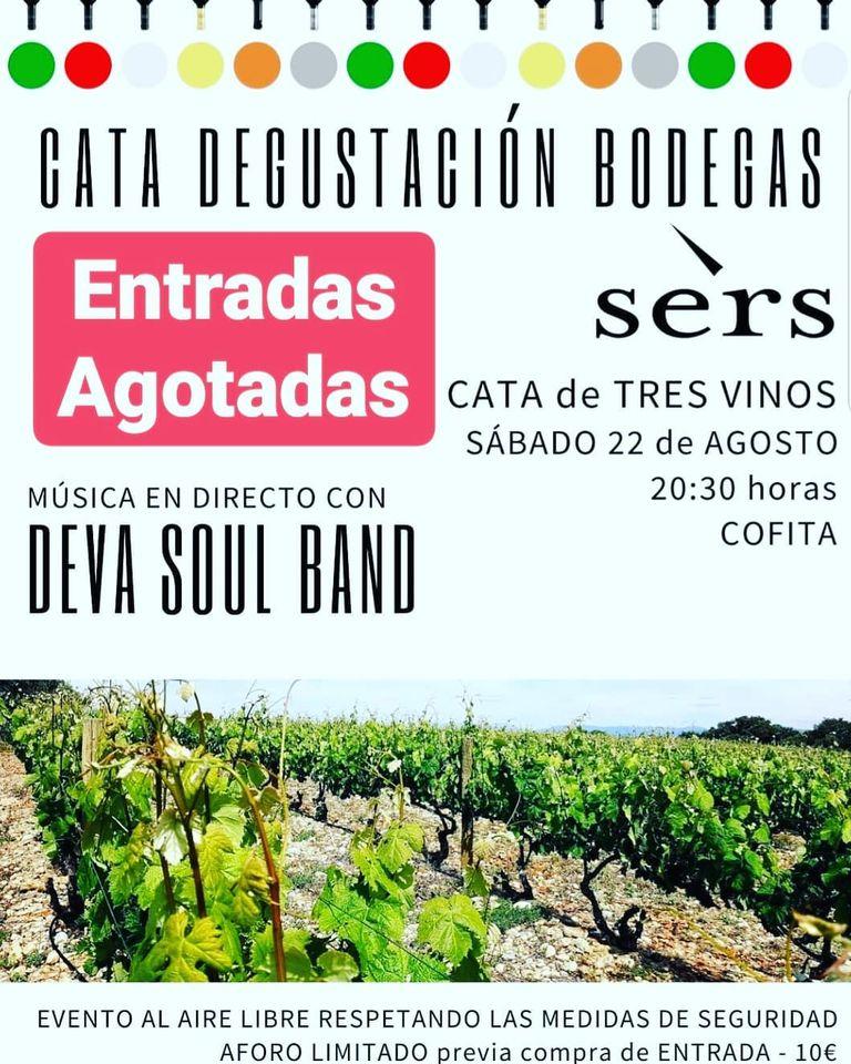 Cata de vino - Bodegas Sers