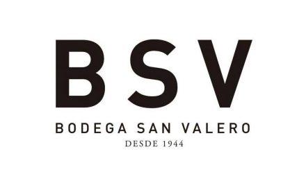 El Moscatel de Alejandría de Bodega San Valero, lo último en vendimiarse en la DOP Cariñena