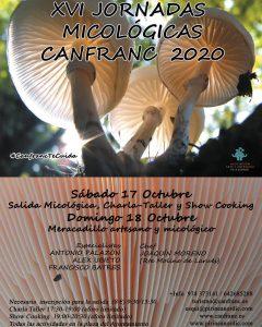 2020 canfranc setas